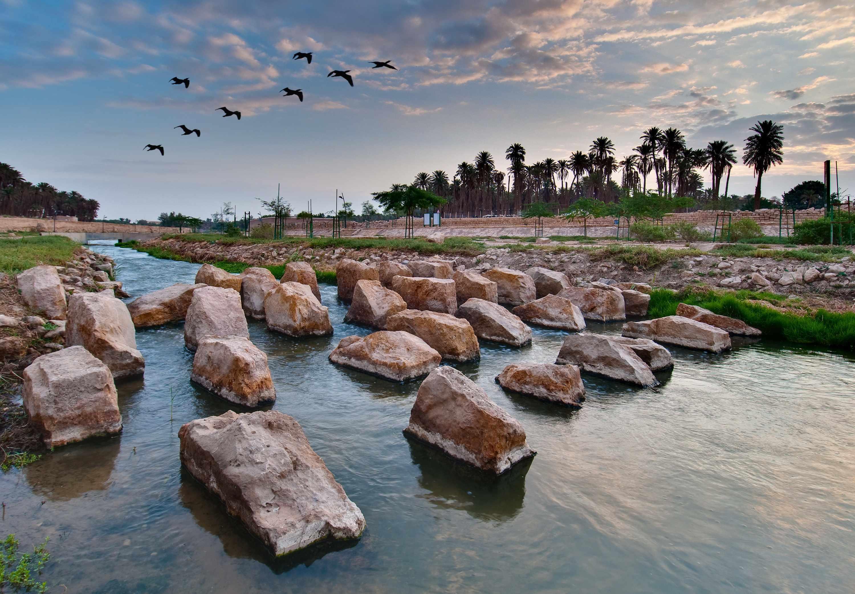 Les oasis qui se sont formées autour des zones humides de Wadi Hanifa sont devenues une destination populaires pour des activités de loisir.