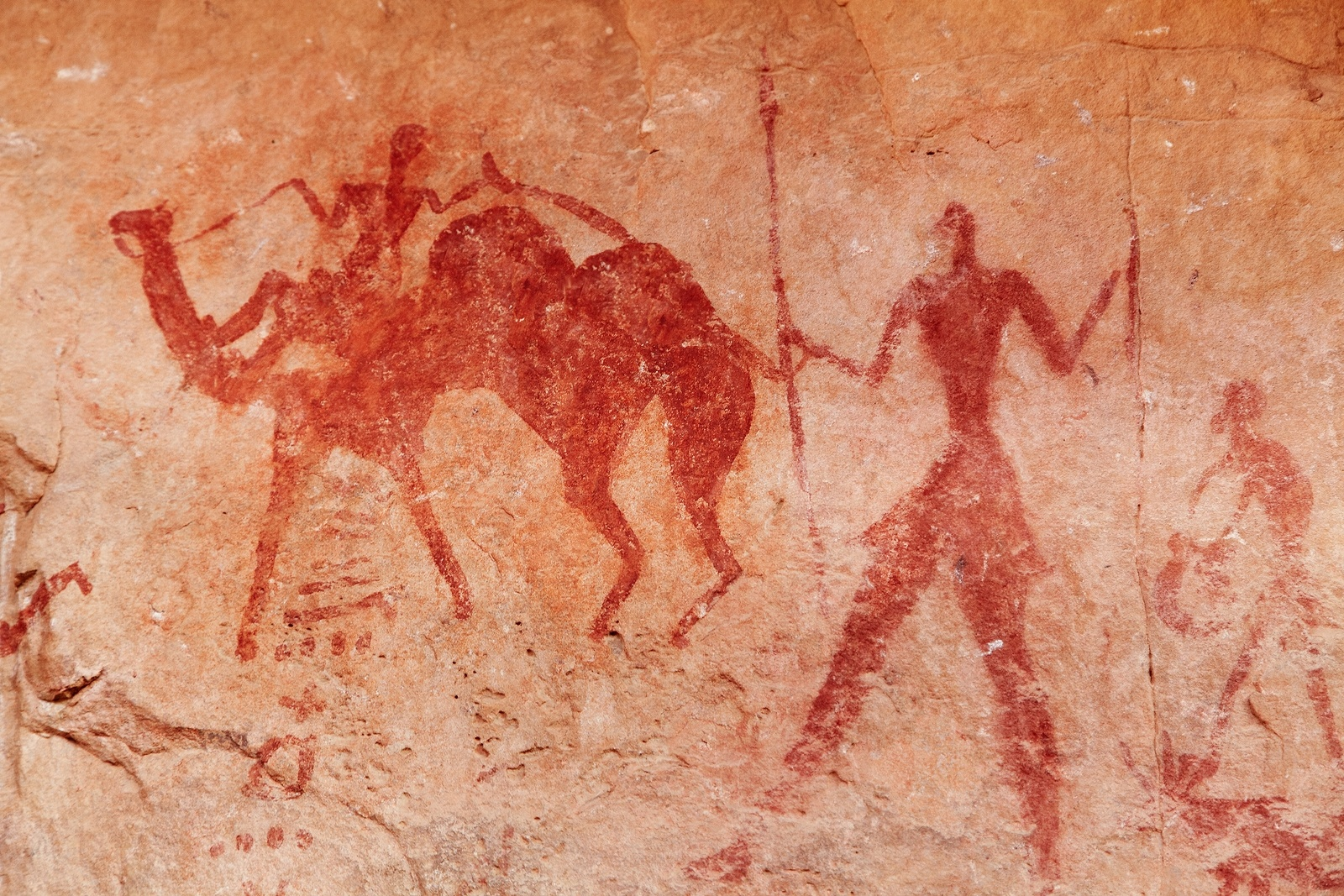 Prehistoric rock paintings in the Arabian desert suggest that man used to use the three-humped camel in the past