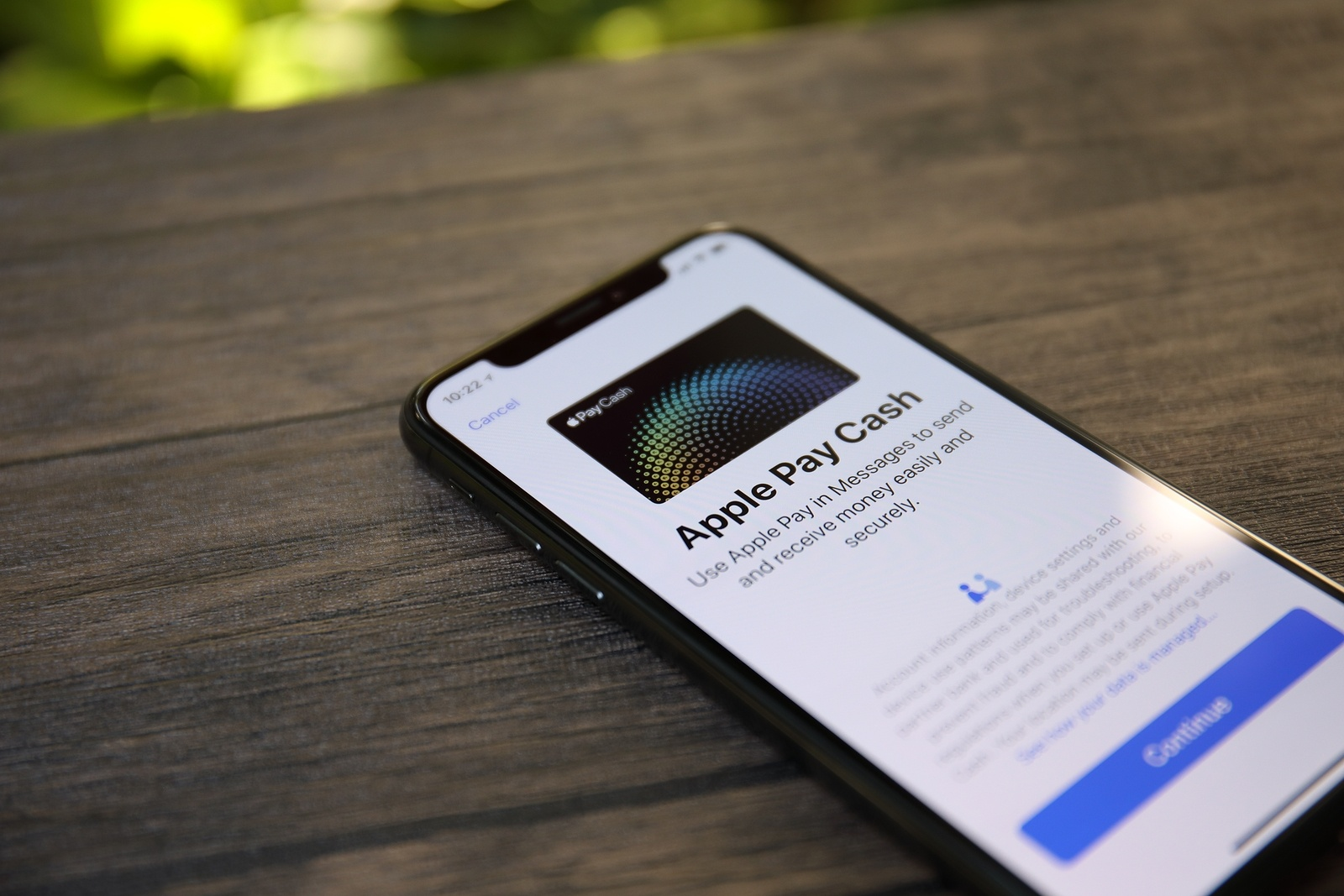iPhone X with Apple Pay on the screen © Denys Prykhodov