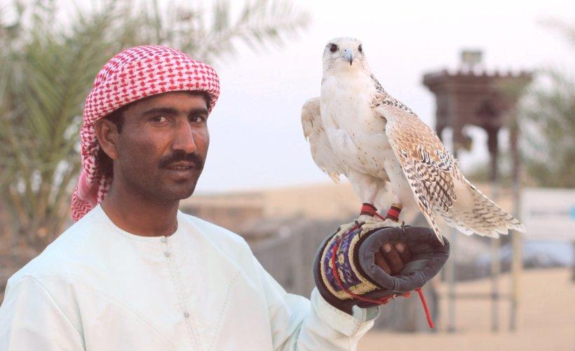 Emirats arabes unis : la fauconnerie, entre tradition et sport moderne